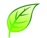 Go Green Leaf